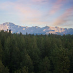 Image of Colorado forest and mountains